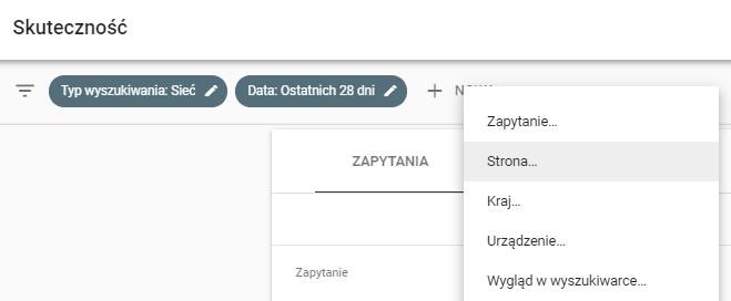 Opcje filtrowania danych w Google Search Console