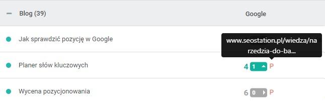 Podsumowanie pozycji w SeoStation